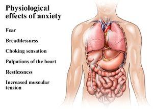 Hogyan változtatja meg testünk működését a stressz? - győri pszichiáter, pszichiáter Győr, depresszió, pánik, alvászavar